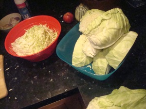 Cabbags Cabbages Yum Yum Yum!